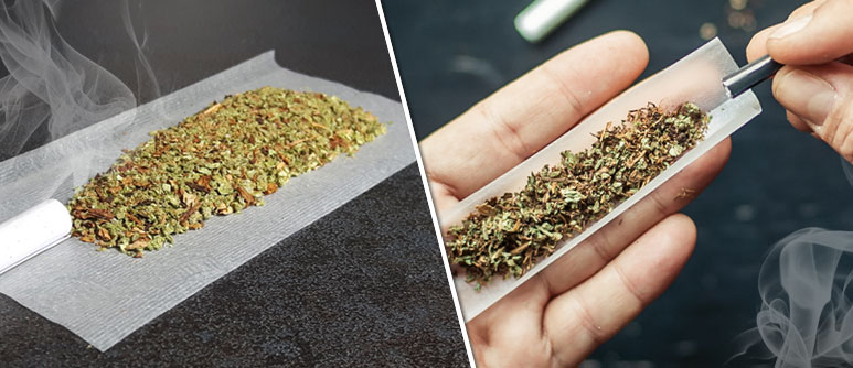 Die Top 10 Tabakalternativen zum Mischen mit Cannabis - Cannaconnection.com