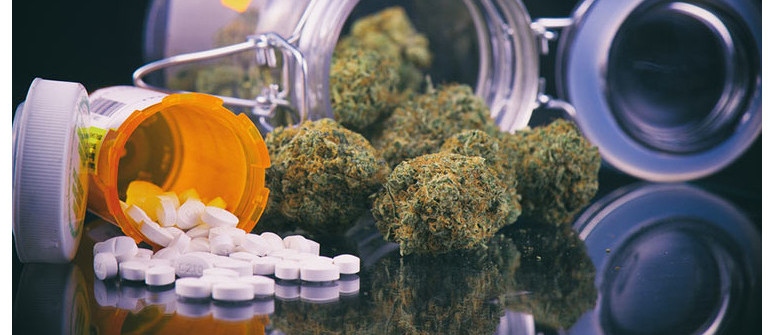 Wechselwirkung zwischen Pharmazeutika und Cannabis