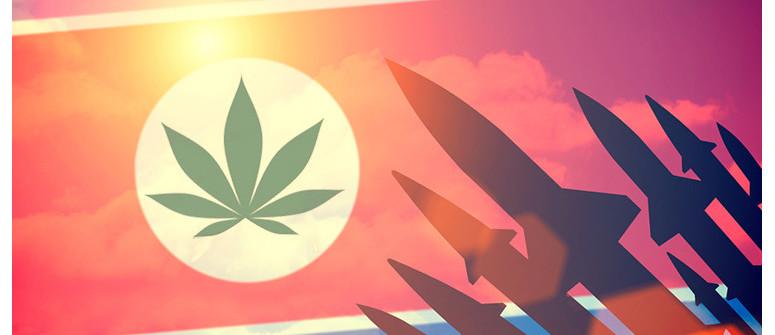Legales Cannabis In Nordkorea: Fakt Oder Fiktion?