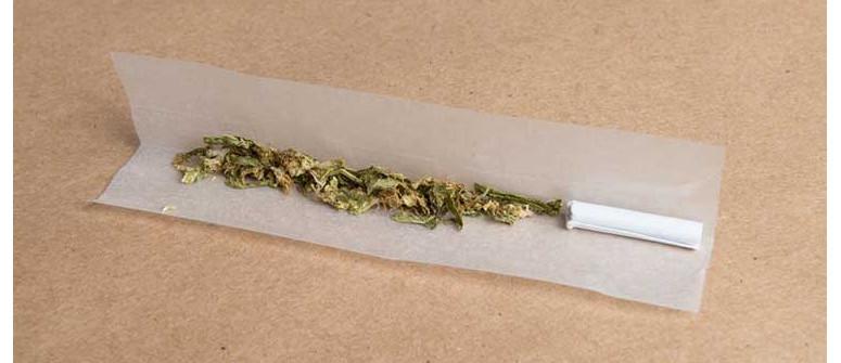 10 potenzielle Arten Hanfpapier zu nutzen