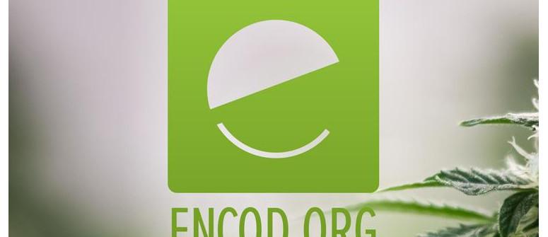 ENCOD (Europäische Koalition Für Gerechte Und Effektive Drogenpolitik)