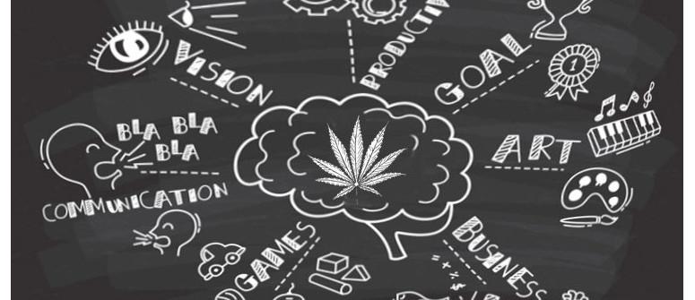 Wie Marihuana Deine Produktivität tatsächlich steigern kann