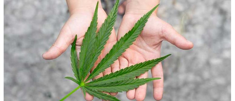 Wie man mit Cannabis rauchenden Teenagern umgeht