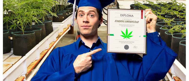 Hochschulbildung: Marihuana-Fachhochschulen und -Universitäten