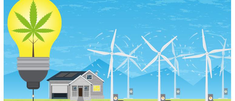 Cannabisanbau mit Wind- und Solarenergie