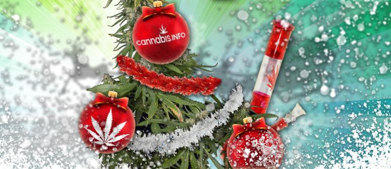 Wie man die perfekte Canna-Weihnachtsfeier schmeißt