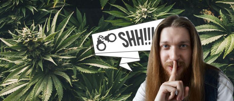 9 Tipps, wie Du Marihuana so diskret wie möglich anbaust