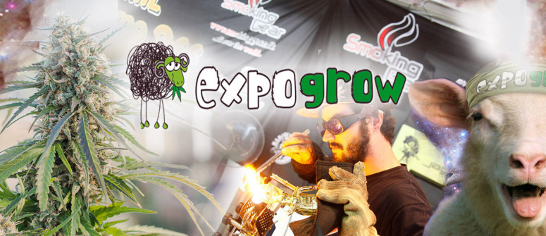 ExpoGrow - Eine geile Veranstaltung für alle Cannabisliebhaber
