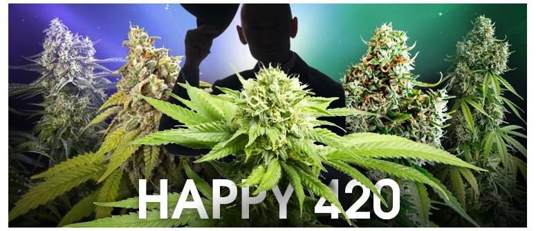 Frohes 420! Ein Tribut an 5 der einflussreichsten Cannabissorten