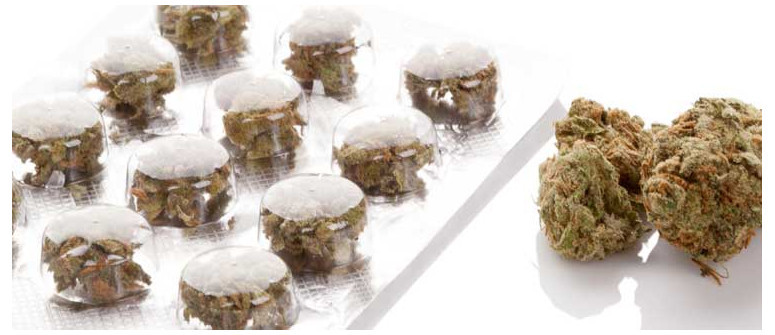 Weniger ist mehr: Wie Du Cannabis richtig dosierst