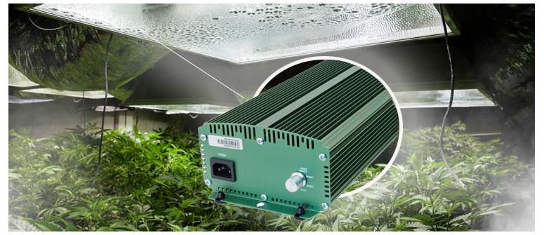 Alles über Vorschaltgeräte für Cannabisanbaulampen