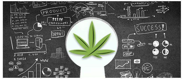 10 Cannabis-Geschäftsideen, die Deinen jetzigen Job öde aussehen lassen