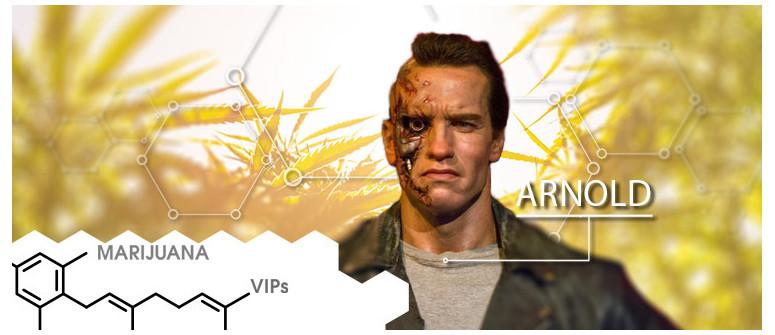 Marihuana-VIP: Arnold Schwarzenegger
