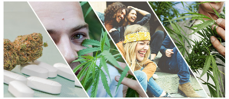 4 Wege, wie Cannabis die Welt verändert