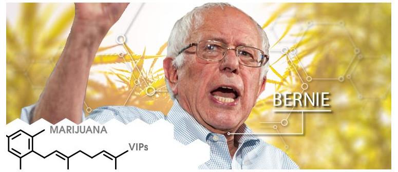 Marihuana-VIP: Bernie Sanders