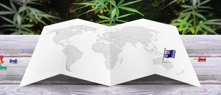 Der Rechtliche Status von Cannabis in Australien