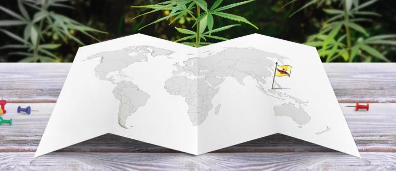 Der Rechtliche Status von Cannabis in Brunei