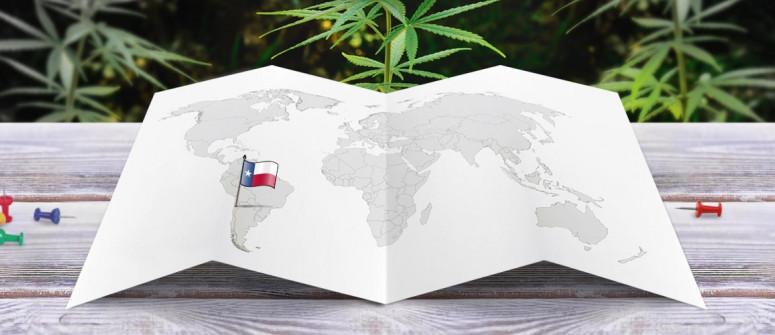 Der Rechtliche Status von Marihuana in Chile