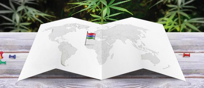 Der Rechtliche Status von Cannabis in Gambia