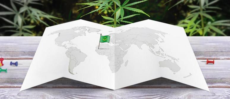 Der rechtliche Status von Cannabis in Mauretanien