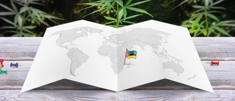 Der Rechtliche Status von Cannabis in Mosambik