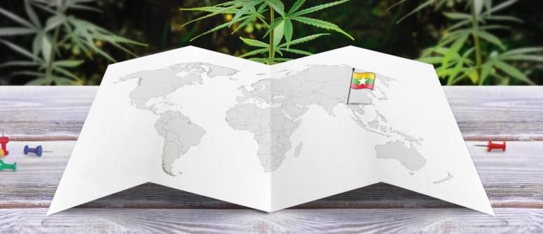 Der Rechtliche Status von Cannabis in Myanmar (Burma)