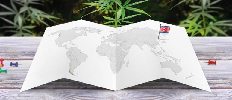 Der Rechtliche Status von Cannabis in Nordkorea