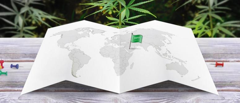 Der Rechtliche Status von Cannabis in Saudi-Arabien