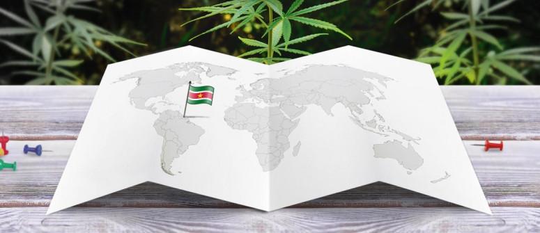 Der Rechtliche Status von Cannabis in Suriname