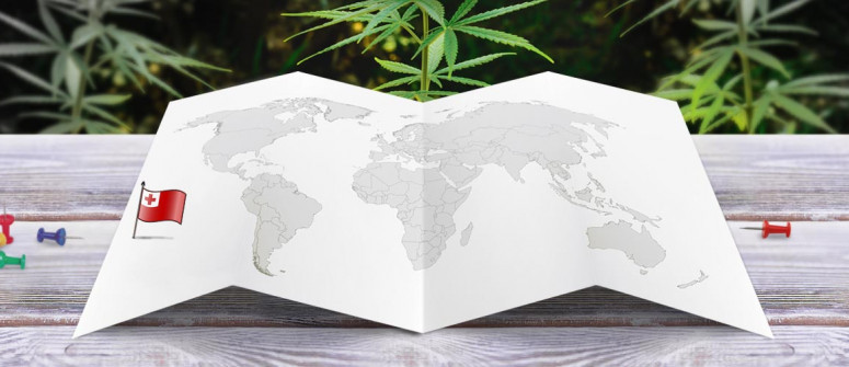 Der Rechtliche Status von Cannabis in Tonga
