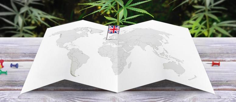 Der rechtliche Status von Cannabis im Vereinigten Königreich