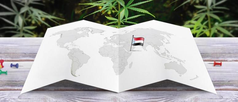 Der Rechtliche Status von Cannabis im Jemen