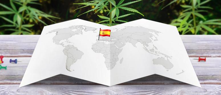 Der rechtliche Status von Cannabis in Spanien