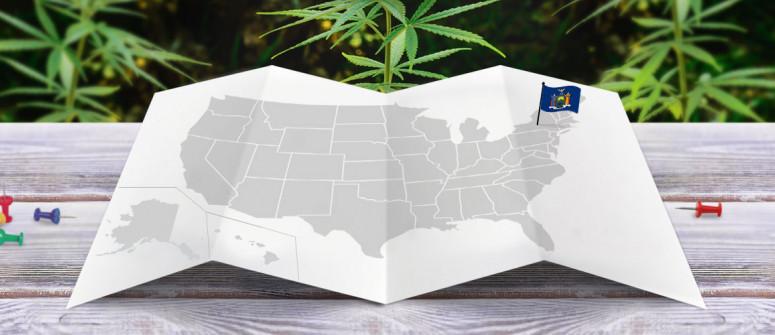 Der rechtliche Status von Cannabis in New York