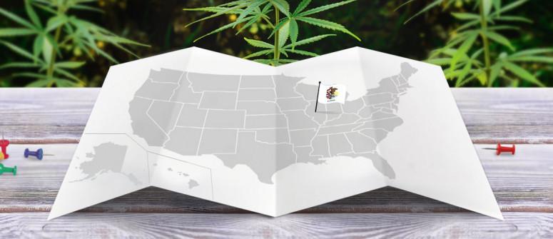 Der rechtliche Status von Cannabis In Illinois