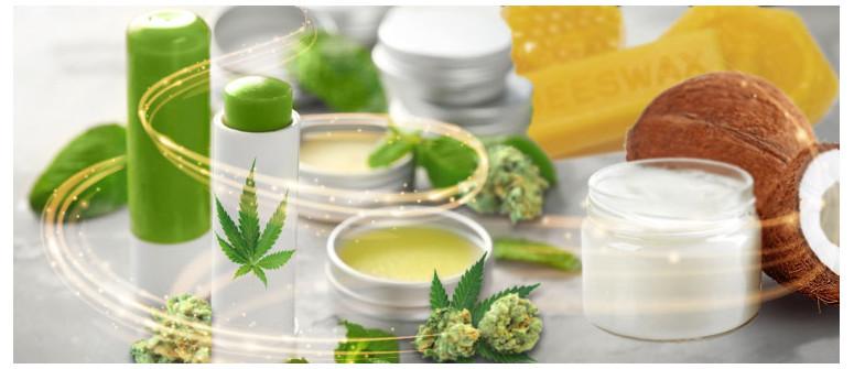 Wie Du Deinen eigenen Cannabis-Lipenbalsam herstellst