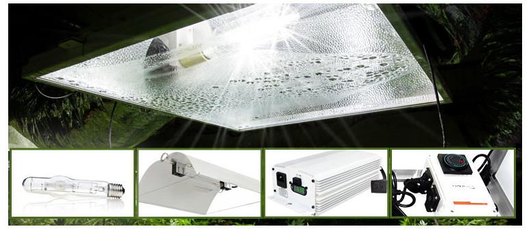 Die 4 Komponenten eines HID Beleuchtungssystems für einen Grow Room
