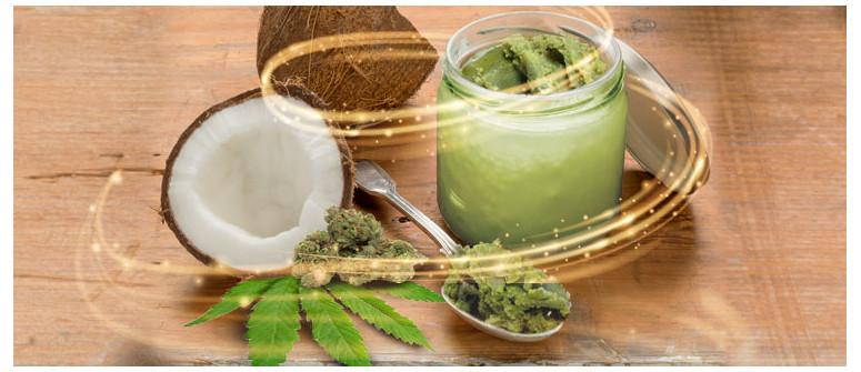 Cannabis-infundiertes Kokosöl: Nutzen und Rezept