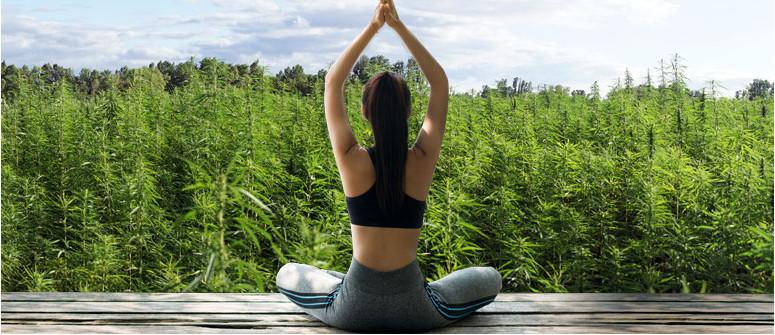 Die Vor- und Nachteile der Kombination von Marihuana und Yoga