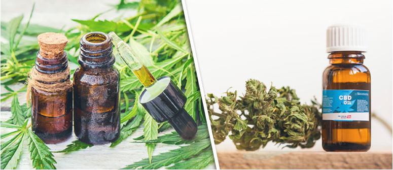Der Unterschied zwischen CBD-Öl und Cannabisöl