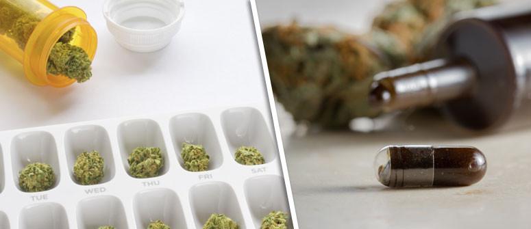 Mikrodosierung von Cannabis: Vielleicht Was Für Dich?