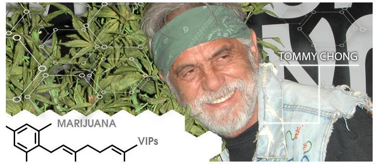 Marihuana VIPs: Tommy Chong