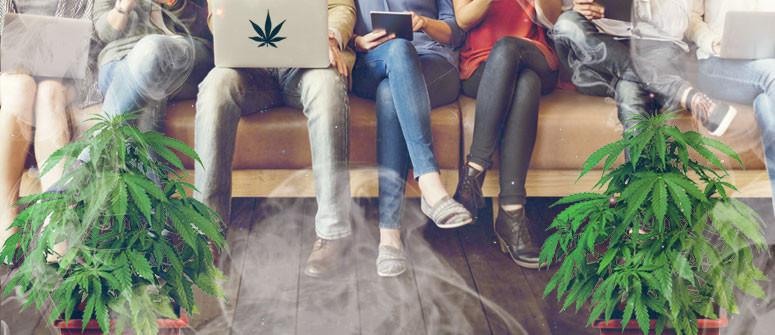 Was sind Cannabis Social Clubs und wie funktionieren Sie?