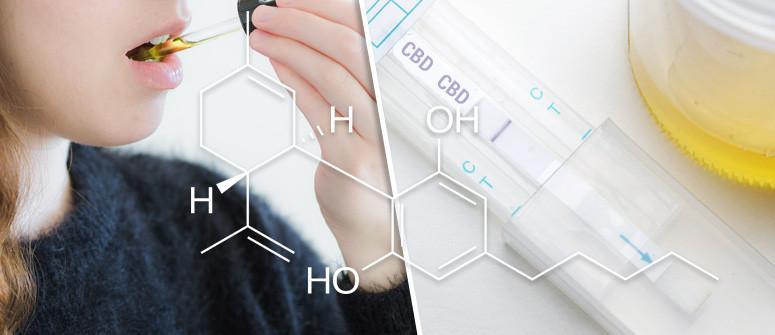 Kann die Einnahme von CBD-Öl zu einem positiven Drogentest führen?