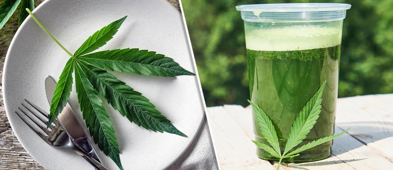 Die Nutzen von rohem Cannabis in Deiner Ernährung