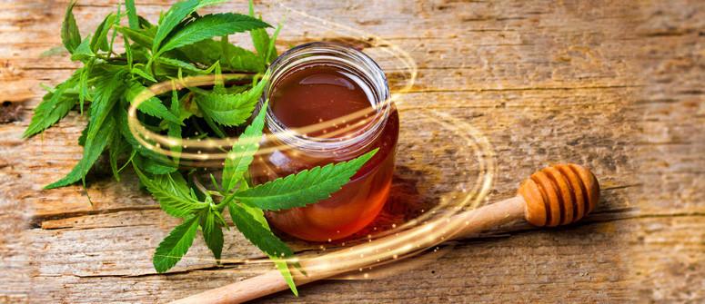 Wie man mit Cannabis angereicherten Honig macht