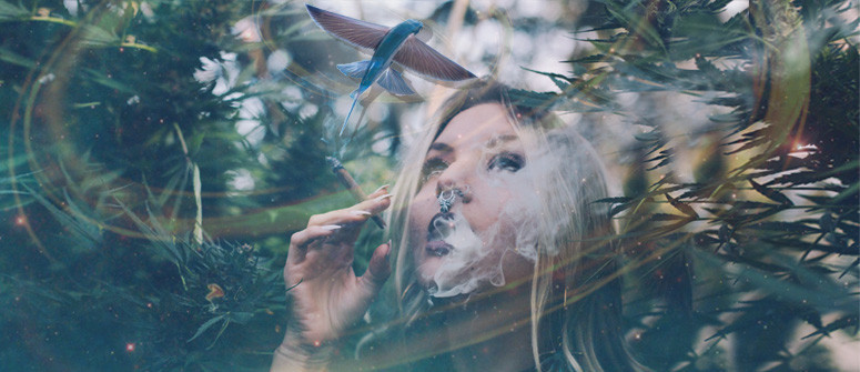 Kann Cannabis Halluzinationen verursachen?