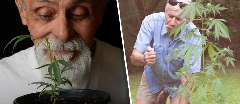 4 Wege, wie Cannabis Dir beim Kampf gegen das Altern hilft