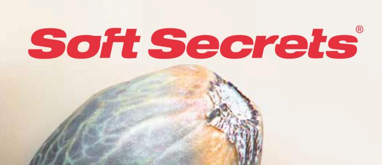 Website-Rezension: Soft Secrets